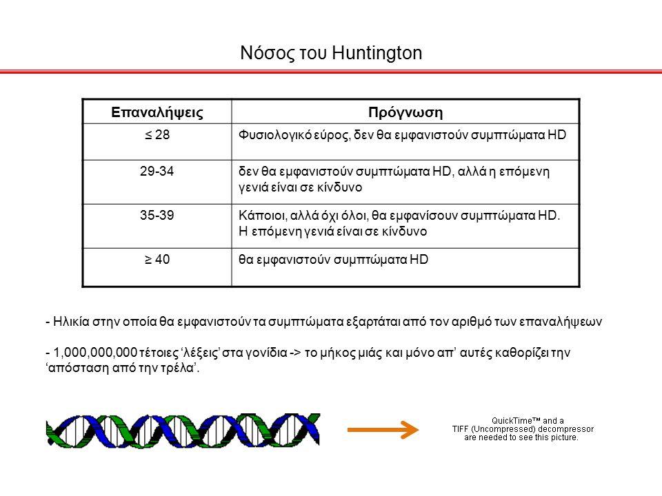 Νόσος του Huntington ΕπαναλήψειςΠρόγνωση ≤ 28Φυσιολογικό εύρος, δεν θα εμφανιστούν συμπτώματα HD 29-34δεν θα εμφανιστούν συμπτώματα HD, αλλά η επόμενη γενιά είναι σε κίνδυνο 35-39Κάποιοι, αλλά όχι όλοι, θα εμφανίσουν συμπτώματα HD.