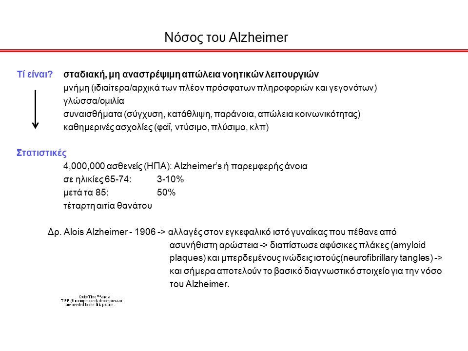 Παθολογία νόσου Alzheimer 1.amyloid plaques and neurofibrillary tangles 2.