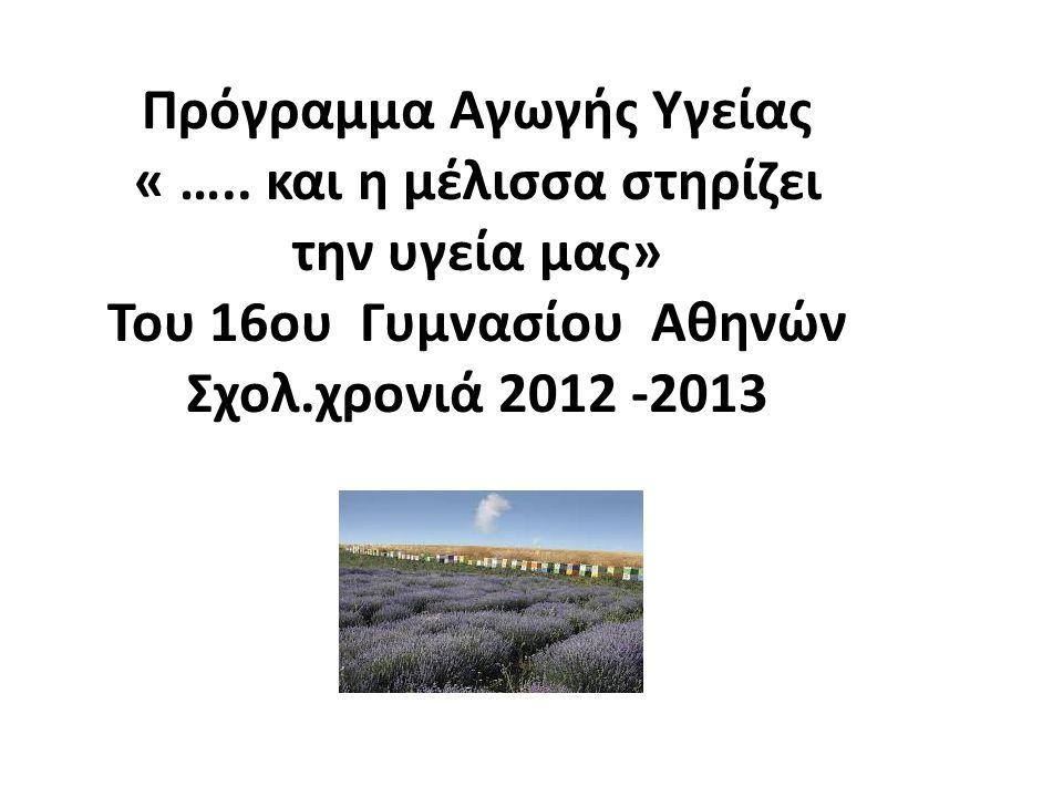 Το έναυσμα για να ασχοληθεί η ομάδα αγωγής υγείας με τη συμβολή της μέλισσας στην υγεία μας, ήταν η επίσκεψη της Γ΄ Γυμνασίου του σχολείου μας τον Οκτώβριο του 2012, στο Γεωπονικό Πανεπιστήμιο Αθηνών.