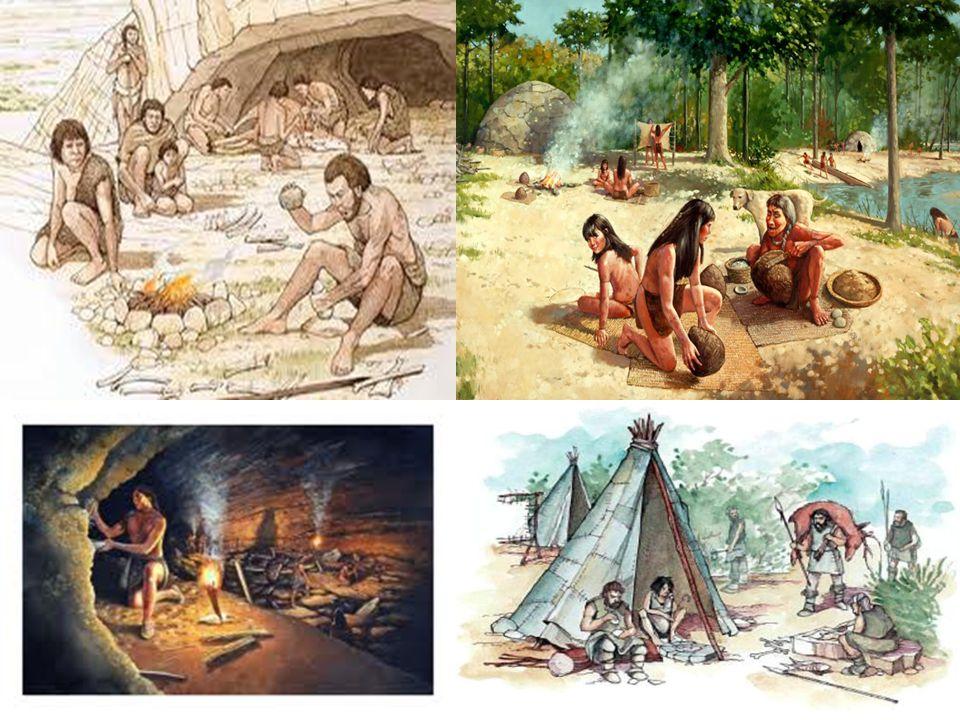 Διατροφή  Ο άνθρωπος της Παλαιολιθικής (Μεσολιθικής) εποχής εξασφάλιζε την τροφή του συλλέγοντας καρπούς, κυνηγώντας ζώα (μαμούθ, ταράνδους, αίγαγρους, αντιλόπες, βόδια, ελάφια, άλογα) και ψαρεύοντας.