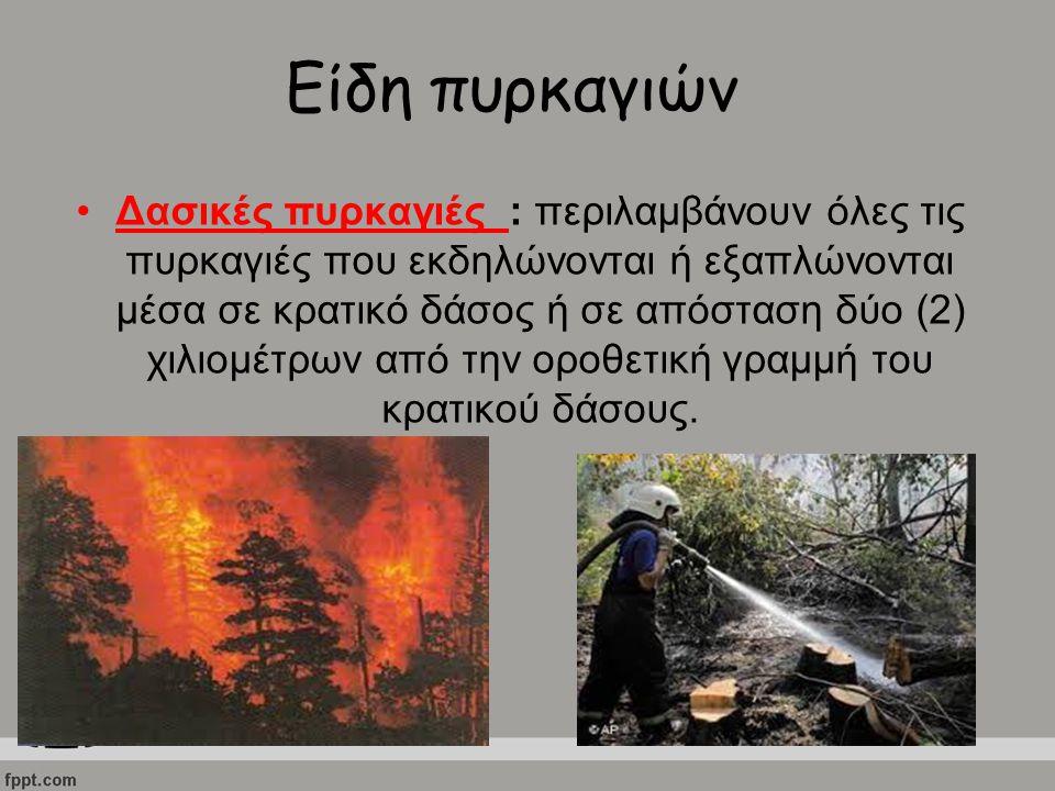 Είδη πυρκαγιών Δασικές πυρκαγιές : περιλαμβάνουν όλες τις πυρκαγιές που εκδηλώνονται ή εξαπλώνονται μέσα σε κρατικό δάσος ή σε απόσταση δύο (2) χιλιομ