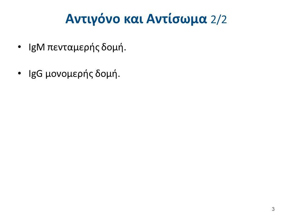Ανοσοαιματολογία και Ανοσία 1.Κυτταρική ανοσία Μακροφάγα (φαγοκυττάρωση & παρουσίαση Ag).