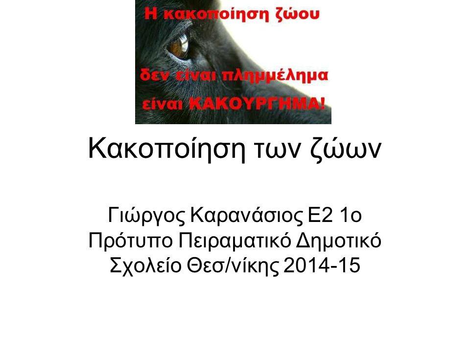 Κακοποίηση των ζώων Γιώργος Καρανάσιος Ε2 1ο Πρότυπο Πειραματικό Δημοτικό Σχολείο Θεσ/νίκης 2014-15