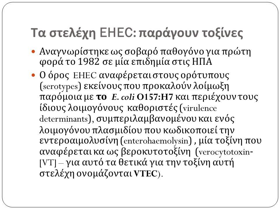 Τα στελέχη EHEC: παράγουν τοξίνες Αναγνωρίστηκε ως σοβαρό παθογόνο για πρώτη φορά το 1982 σε μία επιδημία στις ΗΠΑ Ο όρος EHEC αναφέρεται στους ορότυπους (serotypes) εκείνους που προκαλούν λοίμωξη παρόμοια με το E.