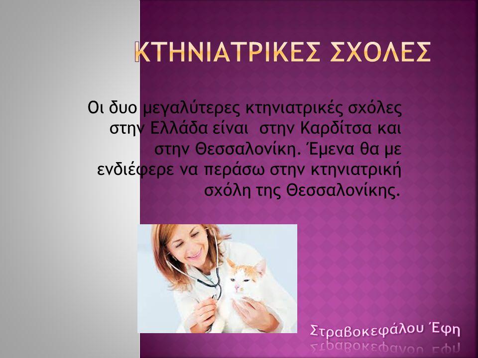 Οι δυο μεγαλύτερες κτηνιατρικές σχόλες στην Ελλάδα είναι στην Καρδίτσα και στην Θεσσαλονίκη. Έμενα θα με ενδιέφερε να περάσω στην κτηνιατρική σχόλη τη