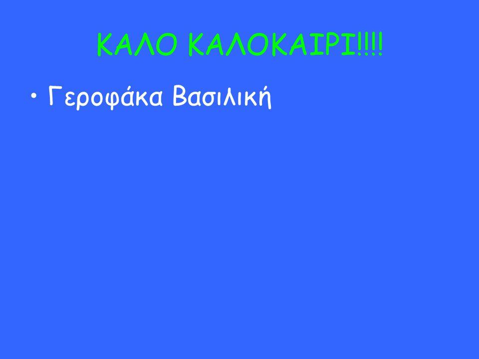 ΚΑΛΟ ΚΑΛΟΚΑΙΡΙ!!!! Γεροφάκα Βασιλική