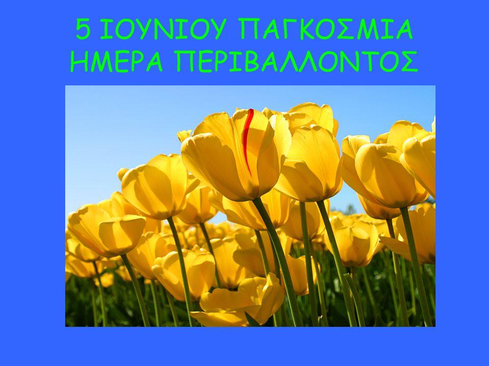 5 ΙΟΥΝΙΟΥ ΠΑΓΚΟΣΜΙΑ ΗΜΕΡΑ ΠΕΡΙΒΑΛΛΟΝΤΟΣ