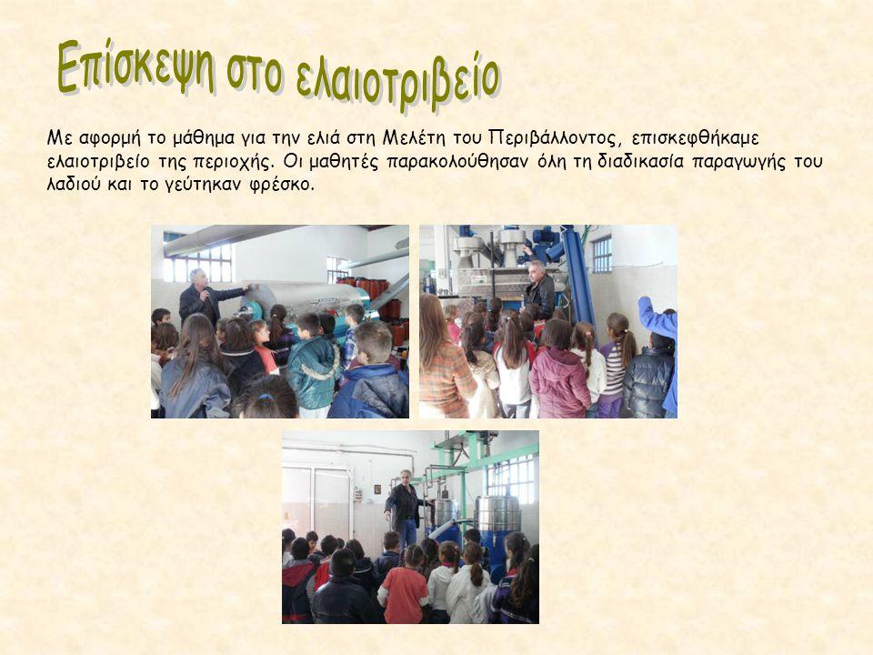 Με αφορμή το μάθημα για την ελιά στη Μελέτη του Περιβάλλοντος, επισκεφθήκαμε ελαιοτριβείο της περιοχής. Οι μαθητές παρακολούθησαν όλη τη διαδικασία πα