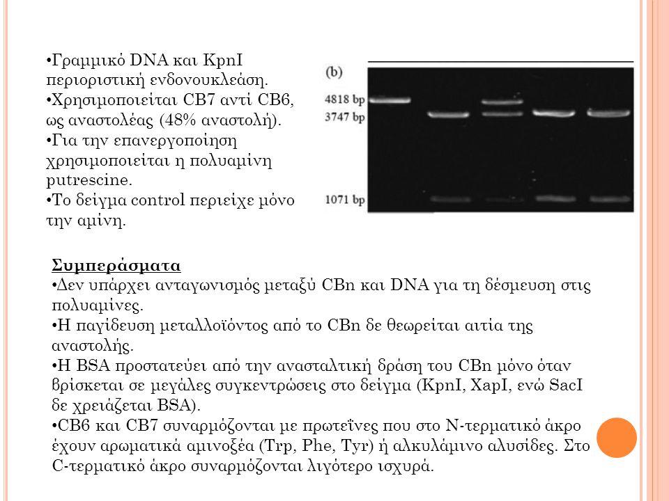 Γραμμικό DNA και KpnI περιοριστική ενδονουκλεάση.