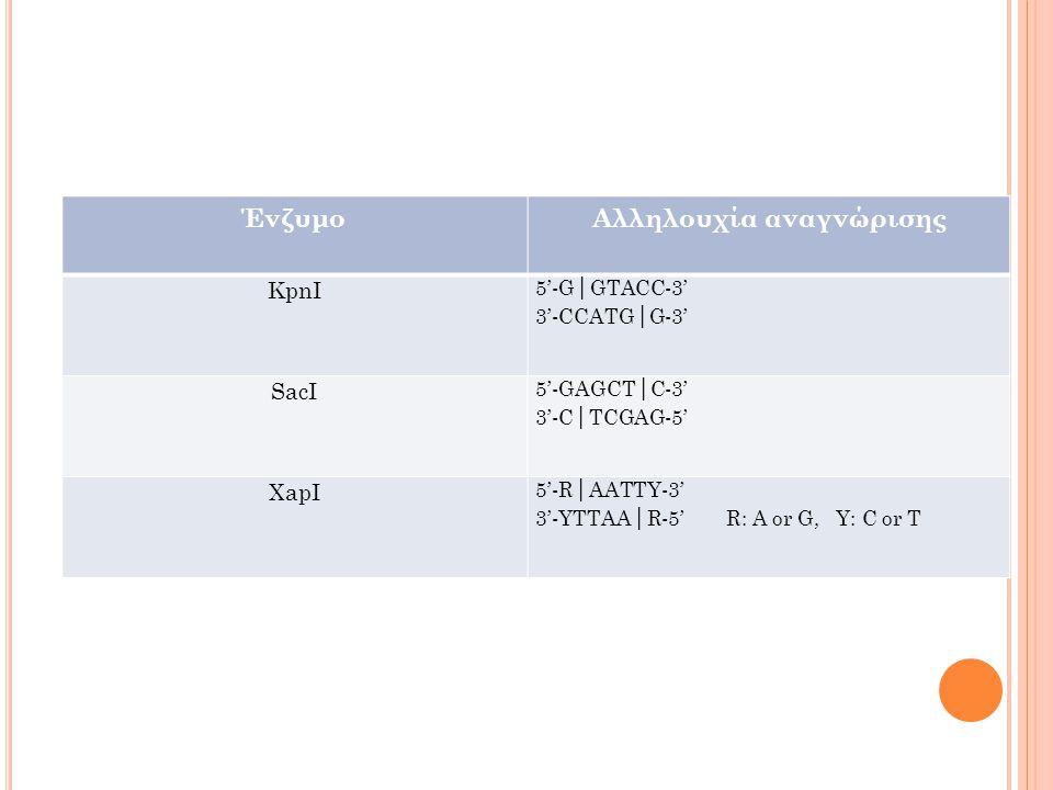 ΈνζυμοΑλληλουχία αναγνώρισης KpnI 5'-G│GTACC-3' 3'-CCATG│G-3' SacI 5'-GAGCT│C-3' 3'-C│TCGAG-5' XapI 5'-R│AATTY-3' 3'-YTTAA│R-5' R: A or G, Y: C or T