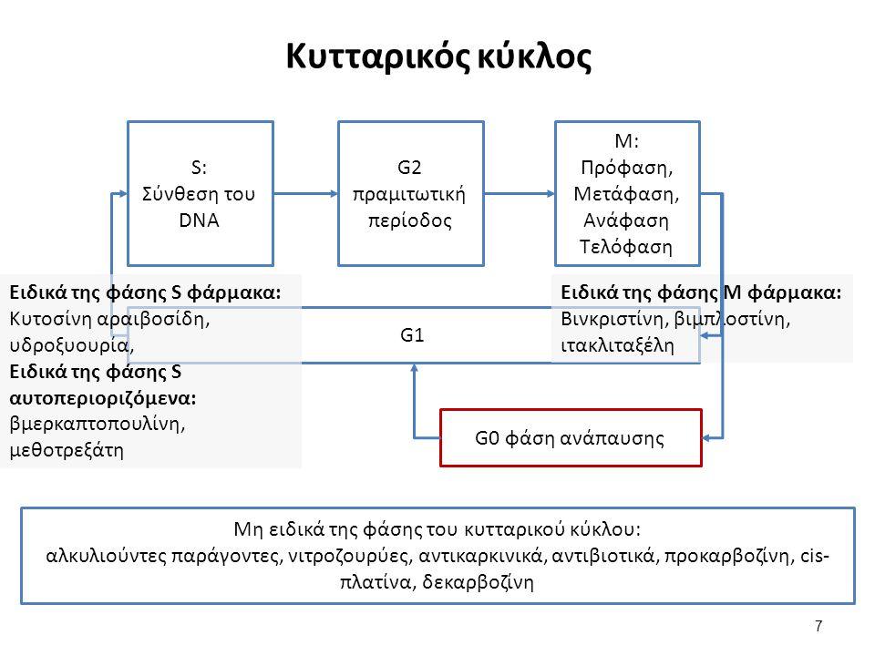 Κυτταρικός κύκλος 7 S: Σύνθεση του DNA G2 πραμιτωτική περίοδος Μ: Πρόφαση, Μετάφαση, Ανάφαση Τελόφαση G1 Μη ειδικά της φάσης του κυτταρικού κύκλου: αλκυλιούντες παράγοντες, νιτροζουρύες, αντικαρκινικά, αντιβιοτικά, προκαρβοζίνη, cis- πλατίνα, δεκαρβοζίνη G0 φάση ανάπαυσης Ειδικά της φάσης Μ φάρμακα: Βινκριστίνη, βιμπλοστίνη, ιτακλιταξέλη Ειδικά της φάσης S φάρμακα: Κυτοσίνη αραιβοσίδη, υδροξυουρία, Ειδικά της φάσης S αυτοπεριοριζόμενα: βμερκαπτοπουλίνη, μεθοτρεξάτη