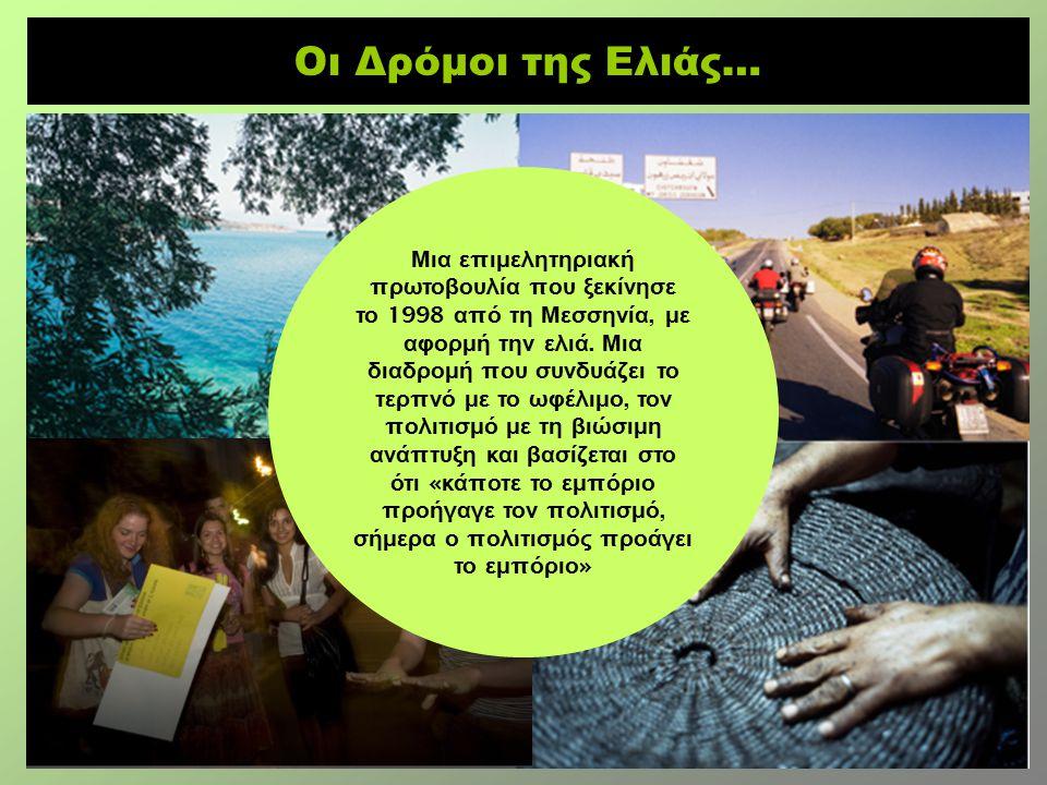 Οι Δρόμοι της Ελιάς… Μια ε π ιμελητηριακή π ρωτοβουλία π ου ξεκίνησε το 1998 α π ό τη Μεσσηνία, με αφορμή την ελιά.