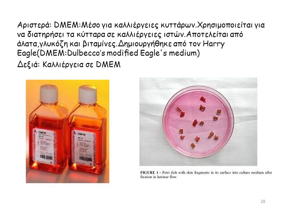 Αριστερά: DMEM:Μέσο για καλλιέργειες κυττάρων.Χρησιμοποιείται για να διατηρήσει τα κύτταρα σε καλλιέργειες ιστών.Αποτελείται από άλατα,γλυκόζη και βιταμίνες.Δημιουργήθηκε από τον Ηarry Eagle(DMEM:Dulbecco's modified Eagle s medium) Δεξιά: Καλλιέργεια σε DMEM 28