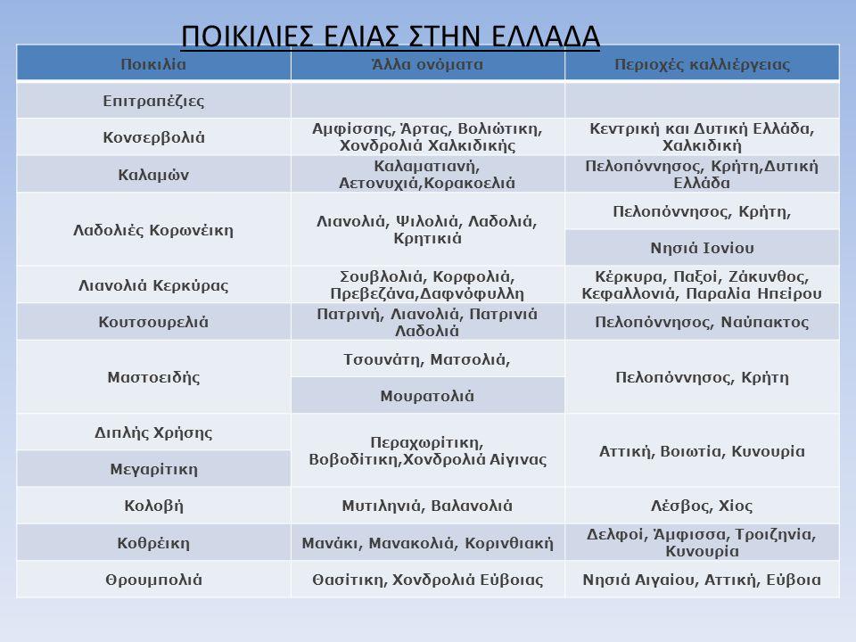 ΠοικιλίαΆλλα ονόματαΠεριοχές καλλιέργειας Επιτραπέζιες Κονσερβολιά Αμφίσσης, Άρτας, Βολιώτικη, Χονδρολιά Χαλκιδικής Κεντρική και Δυτική Ελλάδα, Χαλκιδ
