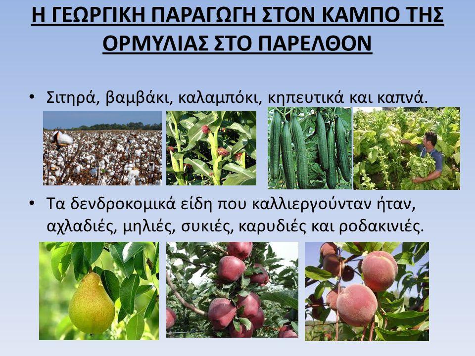 Η ΓΕΩΡΓΙΚΗ ΠΑΡΑΓΩΓΗ ΣΤΟΝ ΚΑΜΠΟ ΤΗΣ ΟΡΜΥΛΙΑΣ ΣΤΟ ΠΑΡΕΛΘΟΝ Σιτηρά, βαμβάκι, καλαμπόκι, κηπευτικά και καπνά. Τα δενδροκομικά είδη που καλλιεργούνταν ήταν