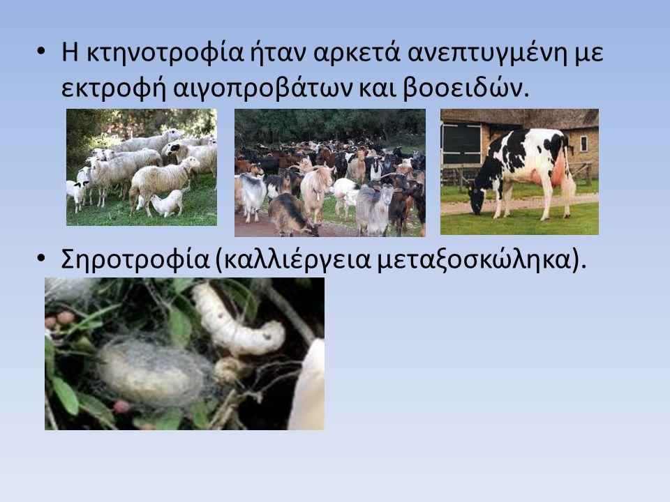 Η κτηνοτροφία ήταν αρκετά ανεπτυγμένη με εκτροφή αιγοπροβάτων και βοοειδών. Σηροτροφία (καλλιέργεια μεταξοσκώληκα).