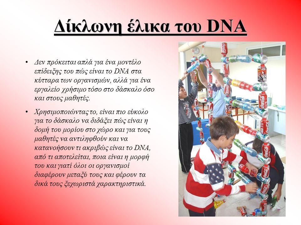 Δίκλωνη έλικα του DNA Δεν πρόκειται απλά για ένα μοντέλο επίδειξης του πώς είναι το DNA στα κύτταρα των οργανισμών, αλλά για ένα εργαλείο χρήσιμο τόσο