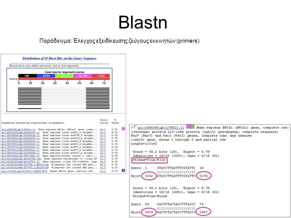 Blastn Παράδειγμα: Έλεγχος εξειδίκευσης ζεύγους εκκινητών (primers)