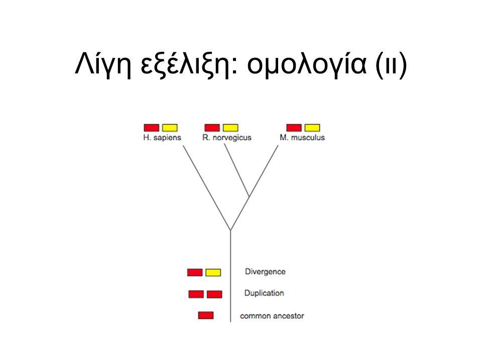 Λίγη εξέλιξη: ομολογία (ιι)