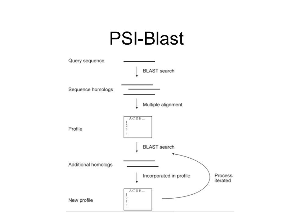 Πριν κάνουμε PSI-Blast πρέπει να ξέρουμε τι αναζητάμε!!.