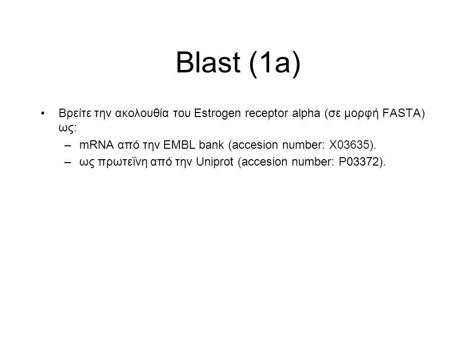 Blast (1a) Βρείτε την ακολουθία του Estrogen receptor alpha (σε μορφή FASTA) ως: –mRNA από την EMBL bank (accesion number: X03635). –ως πρωτεΐνη από τ
