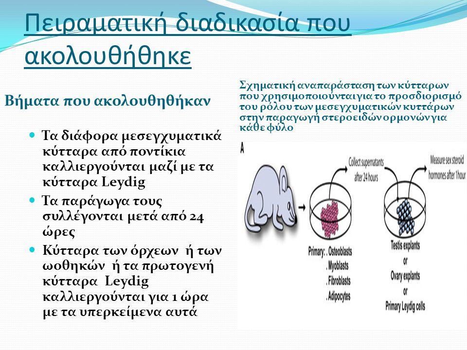 Πειραματική διαδικασία που ακολουθήθηκε Βήματα που ακολουθηθήκαν Σχηματική αναπαράσταση των κύτταρων που χρησιμοποιούνται για το προσδιορισμό του ρόλου των μεσεγχυματικών κυττάρων στην παραγωγή στεροειδών ορμονών για κάθε φύλο Τα διάφορα μεσεγχυματικά κύτταρα από ποντίκια καλλιεργούνται μαζί με τα κύτταρα Leydig Τα παράγωγα τους συλλέγονται μετά από 24 ώρες Κύτταρα των όρχεων ή των ωοθηκών ή τα πρωτογενή κύτταρα Leydig καλλιεργούνται για 1 ώρα με τα υπερκείμενα αυτά