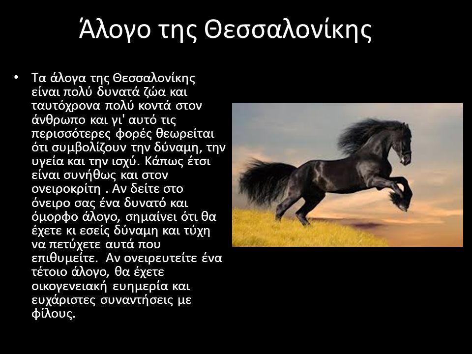 Άλογο της Θεσσαλονίκης Τα άλογα της Θεσσαλονίκης είναι πολύ δυνατά ζώα και ταυτόχρονα πολύ κοντά στον άνθρωπο και γι' αυτό τις περισσότερες φορές θεωρ