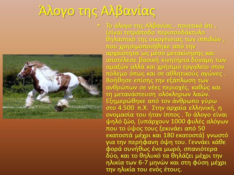 Άλογο της Αλβανίας Το άλογο της Αλβανίας, ποιητικά άτι, (είναι τετράποδο περισσοδάκτυλο θηλαστικό της οικογένειας των ιππιδών, που χρησιμοποιήθηκε από