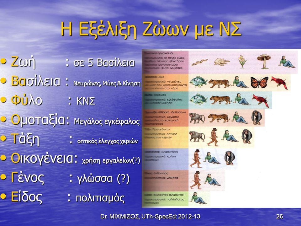 Η Εξέλιξη Ζώων με ΝΣ Ζωή : σε 5 Βασίλεια Ζωή : σε 5 Βασίλεια Βασίλεια : Νευρώνες, Μύες & Κίνηση Βασίλεια : Νευρώνες, Μύες & Κίνηση Φύλο : ΚΝΣ Φύλο : Κ