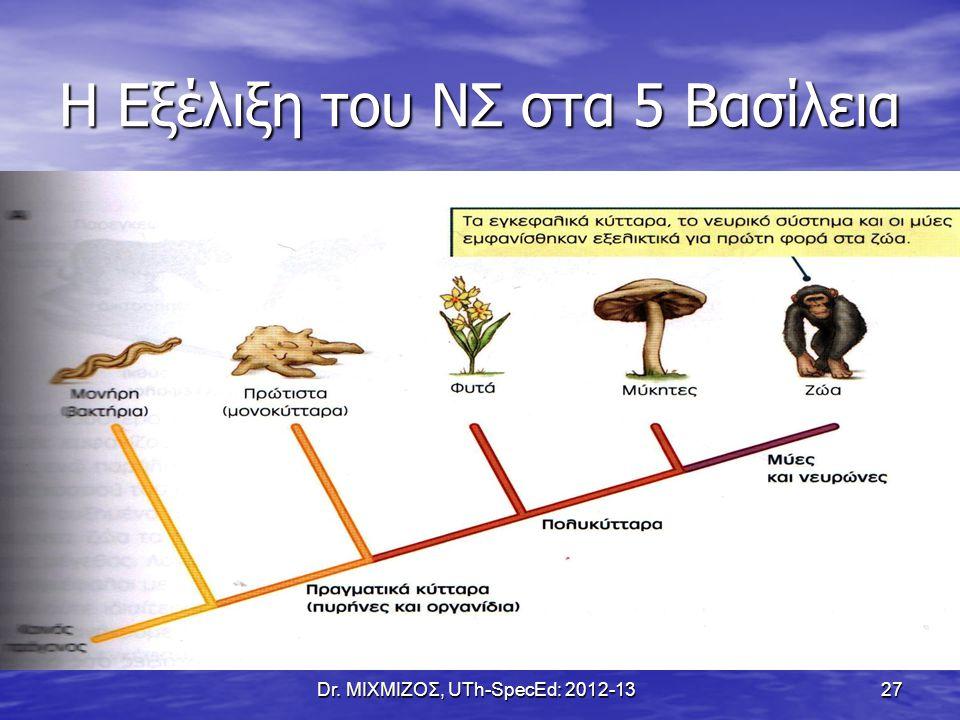 Η Εξέλιξη του ΝΣ στα 5 Βασίλεια Dr. ΜΙΧΜΙΖΟΣ, UTh-SpecEd: 2012-13 27