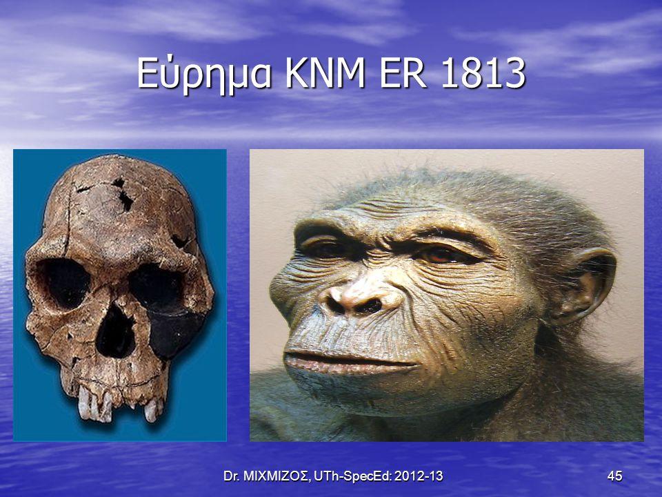 Homo erectus Εμφανίζεται πριν από 1.6 εκ.