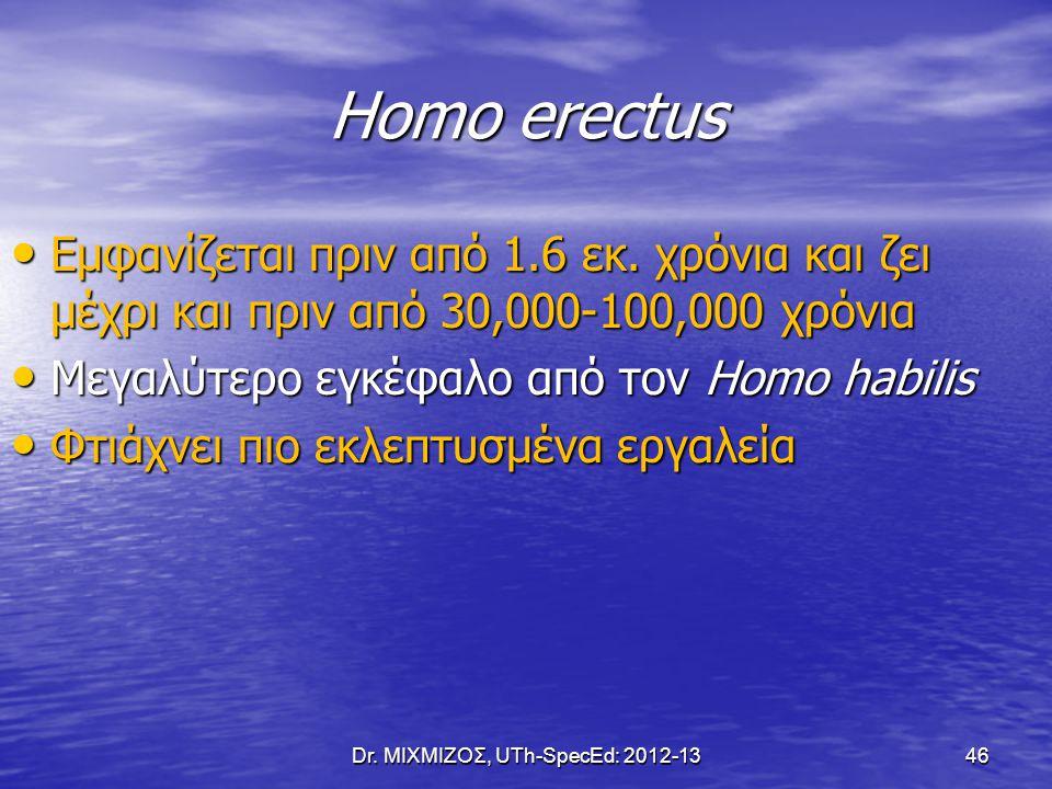 Homo erectus Εμφανίζεται πριν από 1.6 εκ. χρόνια και ζει μέχρι και πριν από 30,000-100,000 χρόνια Εμφανίζεται πριν από 1.6 εκ. χρόνια και ζει μέχρι κα