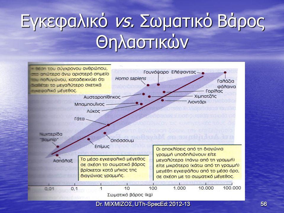 Εγκεφαλικό vs. Σωματικό Βάρος Θηλαστικών Dr. ΜΙΧΜΙΖΟΣ, UTh-SpecEd: 2012-13 56