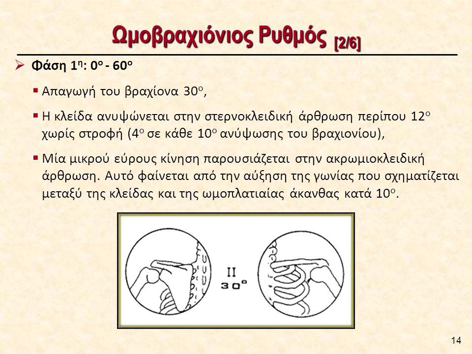 Ωμοβραχιόνιος Ρυθμός [2/6] 14  Φάση 1 η : 0 ο - 60 ο  Απαγωγή του βραχίονα 30 ο,  Η κλείδα ανυψώνεται στην στερνοκλειδική άρθρωση περίπου 12 ο χωρίς στροφή (4 ο σε κάθε 10 ο ανύψωσης του βραχιονίου),  Μία μικρού εύρους κίνηση παρουσιάζεται στην ακρωμιοκλειδική άρθρωση.