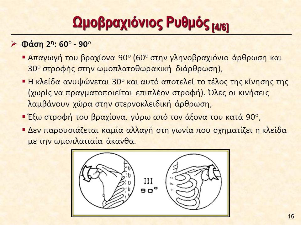 Ωμοβραχιόνιος Ρυθμός [4/6] 16  Φάση 2 η : 60 ο - 90 ο  Απαγωγή του βραχίονα 90 ο (60 ο στην γληνοβραχιόνιο άρθρωση και 30 ο στροφής στην ωμοπλατοθωρακική διάρθρωση),  Η κλείδα ανυψώνεται 30 ο και αυτό αποτελεί το τέλος της κίνησης της (χωρίς να πραγματοποιείται επιπλέον στροφή).