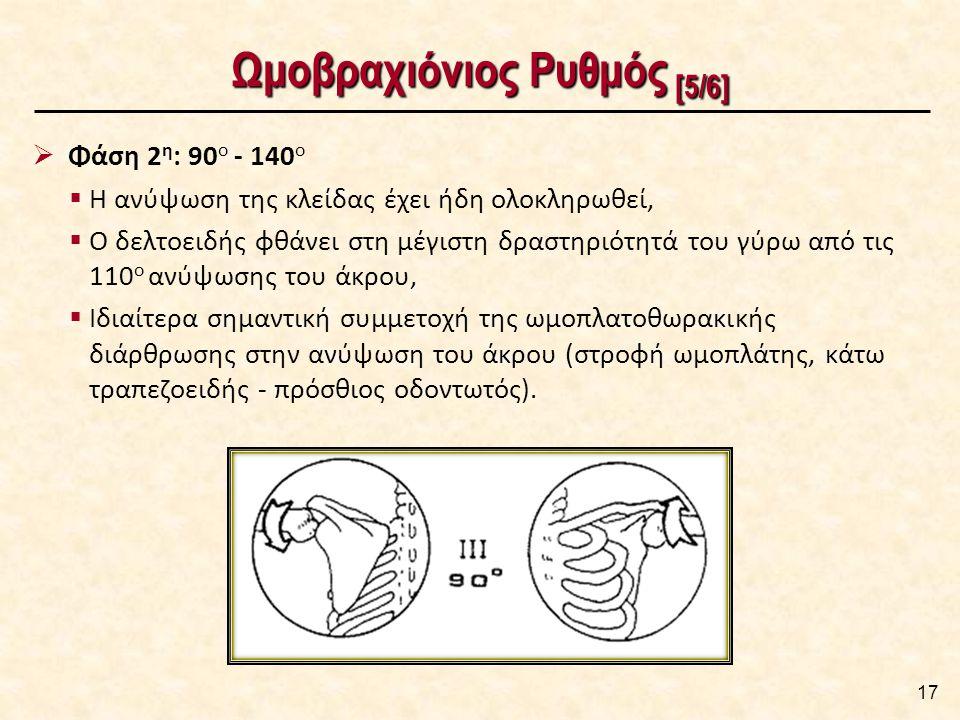 Ωμοβραχιόνιος Ρυθμός [5/6] 17  Φάση 2 η : 90 ο - 140 ο  Η ανύψωση της κλείδας έχει ήδη ολοκληρωθεί,  Ο δελτοειδής φθάνει στη μέγιστη δραστηριότητά του γύρω από τις 110 ο ανύψωσης του άκρου,  Ιδιαίτερα σημαντική συμμετοχή της ωμοπλατοθωρακικής διάρθρωσης στην ανύψωση του άκρου (στροφή ωμοπλάτης, κάτω τραπεζοειδής - πρόσθιος οδοντωτός).