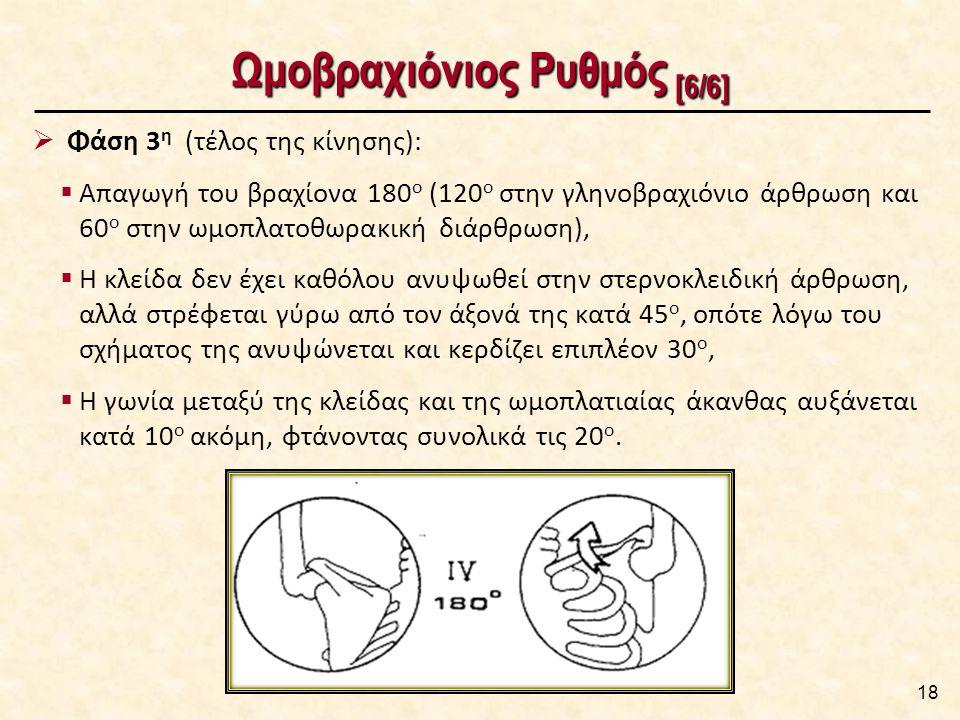 Ωμοβραχιόνιος Ρυθμός [6/6] 18  Φάση 3 η (τέλος της κίνησης):  Απαγωγή του βραχίονα 180 ο (120 ο στην γληνοβραχιόνιο άρθρωση και 60 ο στην ωμοπλατοθωρακική διάρθρωση),  Η κλείδα δεν έχει καθόλου ανυψωθεί στην στερνοκλειδική άρθρωση, αλλά στρέφεται γύρω από τον άξονά της κατά 45 ο, οπότε λόγω του σχήματος της ανυψώνεται και κερδίζει επιπλέον 30 ο,  Η γωνία μεταξύ της κλείδας και της ωμοπλατιαίας άκανθας αυξάνεται κατά 10 ο ακόμη, φτάνοντας συνολικά τις 20 ο.