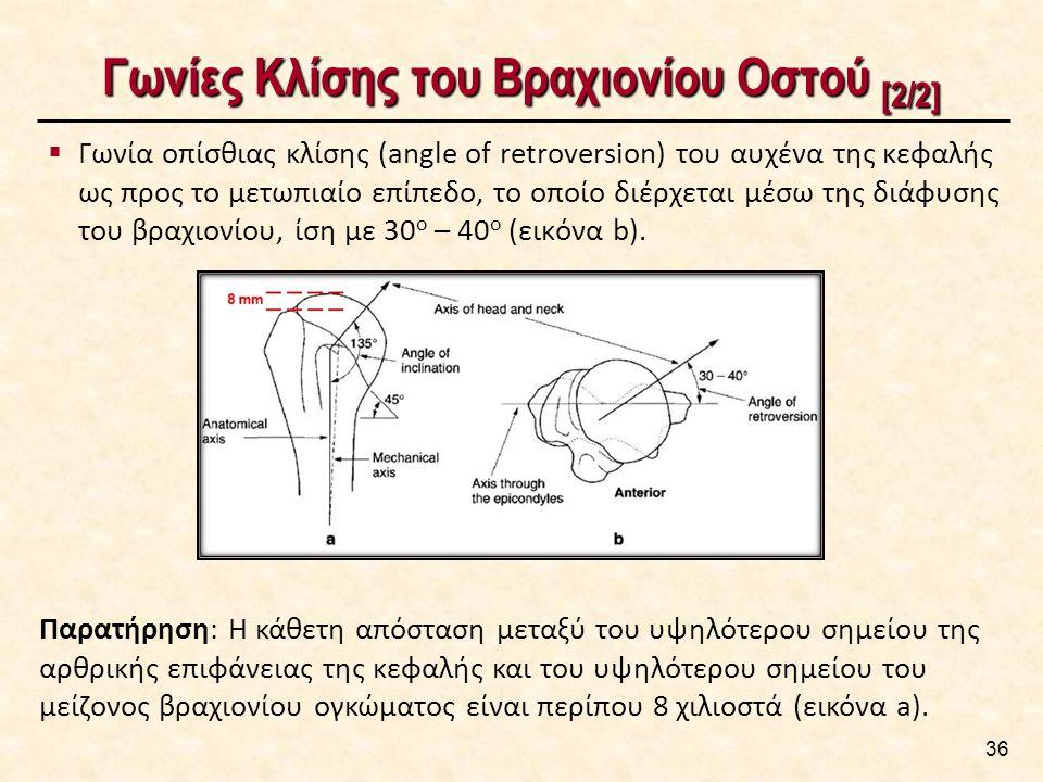 Γωνίες Κλίσης του Βραχιονίου Οστού [2/2]  Γωνία οπίσθιας κλίσης (angle of retroversion) του αυχένα της κεφαλής ως προς το μετωπιαίο επίπεδο, το οποίο