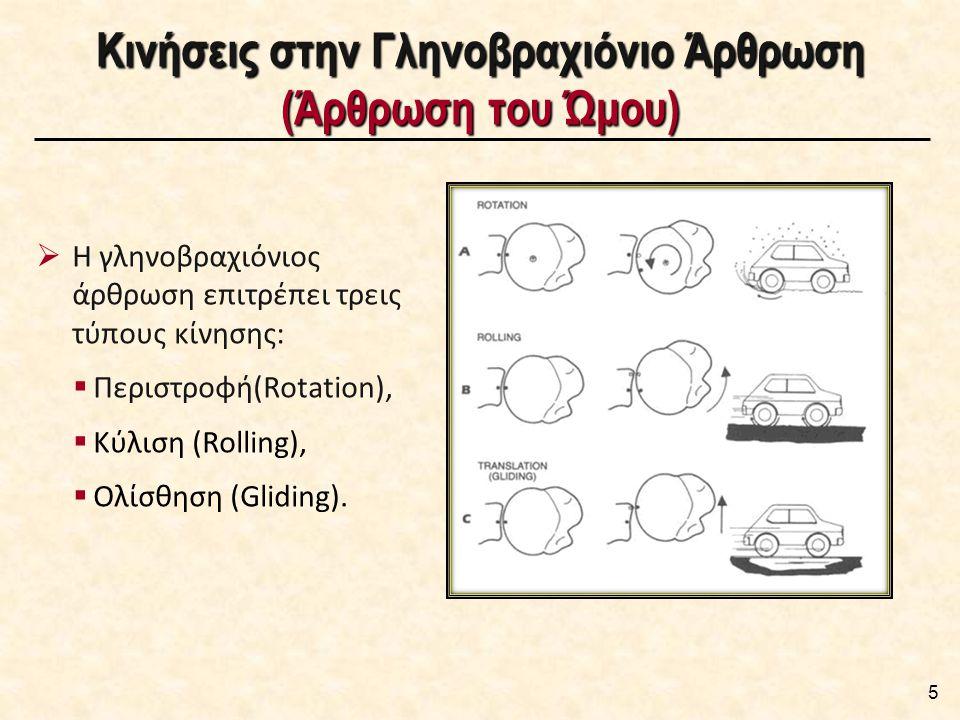 Κινήσεις στην Γληνοβραχιόνιο Άρθρωση (Άρθρωση του Ώμου)  Η γληνοβραχιόνιος άρθρωση επιτρέπει τρεις τύπους κίνησης:  Περιστροφή(Rotation),  Κύλιση (Rolling),  Ολίσθηση (Gliding).
