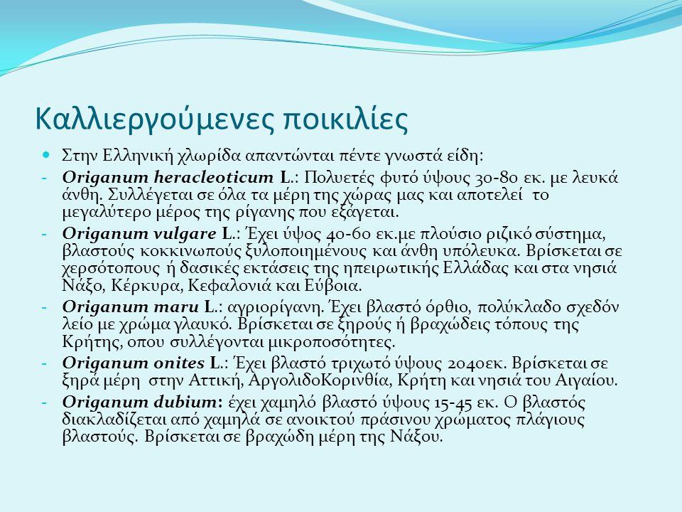 Καλλιεργούμενες ποικιλίες Στην Ελληνική χλωρίδα απαντώνται πέντε γνωστά είδη: - Origanum heracleoticum L.: Πολυετές φυτό ύψους 30-80 εκ. με λευκά άνθη