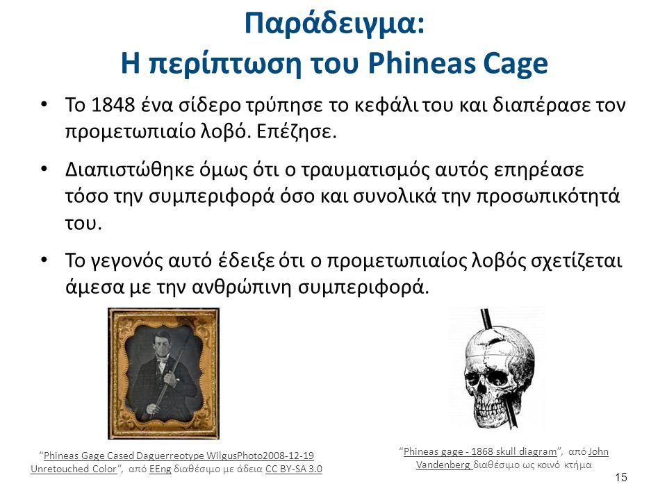Παράδειγμα: Η περίπτωση του Phineas Cage Το 1848 ένα σίδερο τρύπησε το κεφάλι του και διαπέρασε τον προμετωπιαίο λοβό. Επέζησε. Διαπιστώθηκε όμως ότι