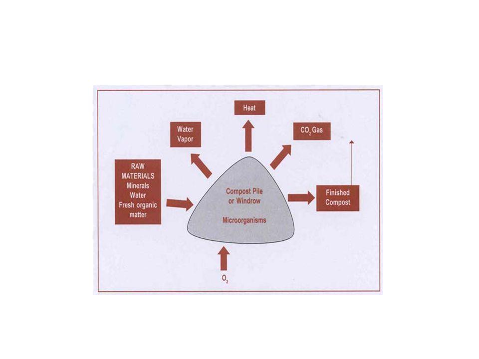 Φυσικοχημικοί παράγοντες που επηρεάζουν την κομποστοποίηση Τα C και N επηρεάζουν καταλυτικά τη διαδικασία της κομποστοποίησης.