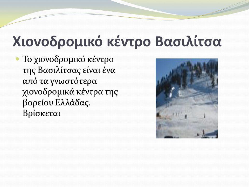 Χιονοδρομικό κέντρο Βασιλίτσα Το χιονοδρομικό κέντρο της Βασιλίτσας είναι ένα από τα γνωστότερα χιονοδρομικά κέντρα της βορείου Ελλάδας. Βρίσκεται
