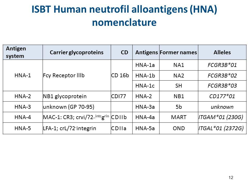 ISBT Human neutrofil alloantigens (HNA) nomenclature Antigen system Carrier glycoproteinsCDAntigensFormer namesAlleles HNA-1 Fcγ Receptor lllb CD 16b HNA-1aNA1FCGR3B*01 HNA-1bNA2FCGR3B*02 HNA-1cSHFCGR3B*03 HNA-2NB1 glycoproteinCDI77HNA-2NB1CD177*01 HNA-3unknown (GP 70-95) HNA-3a5bunknown HNA-4MAC-1: CR3; crvi/?2 _intc g rin CDIIbHNA-4aMARTITGAΜ*01 (230G) HNA-5LFA-1; crL/?2 - integrinCDIIaHNA-5aONDITGAL*01 (2372G) 12