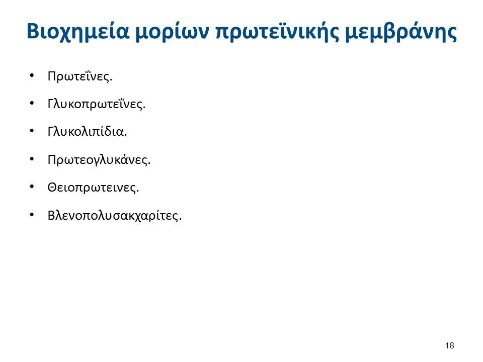 Βιοχημεία μορίων πρωτεϊνικής μεμβράνης Πρωτεΐνες. Γλυκοπρωτεΐνες. Γλυκολιπίδια. Πρωτεογλυκάνες. Θειοπρωτεινες. Βλενοπολυσακχαρίτες. 18