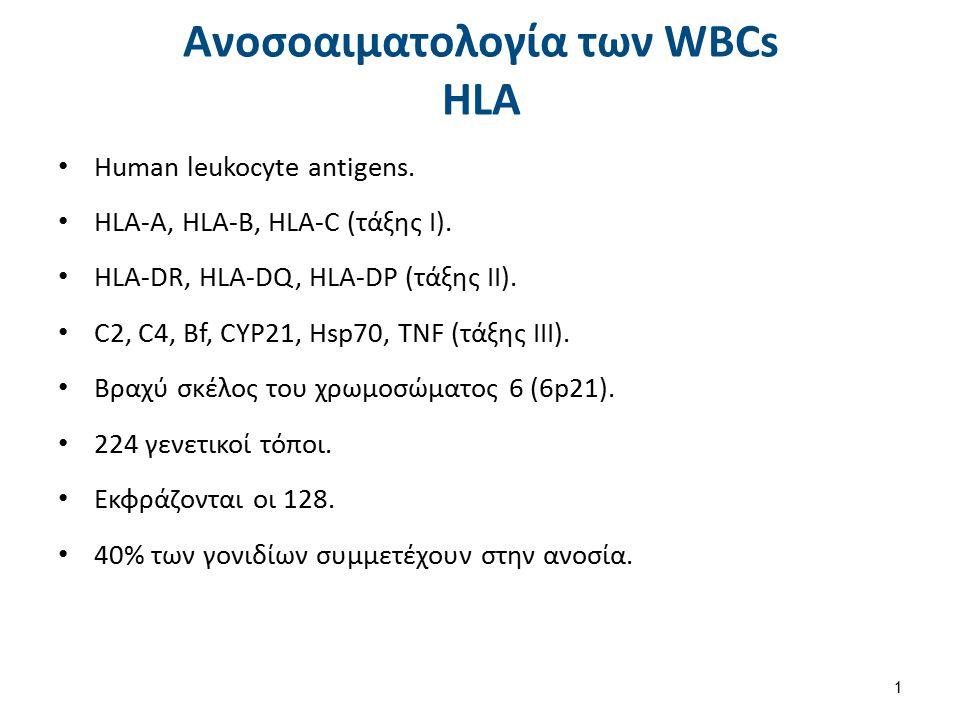 Ανοσοαιματολογία των WBCs ΗLA Human leukocyte antigens. HLA-A, HLA-B, HLA-C (τάξης Ι). ΗLA-DR, HLA-DQ, HLA-DP (τάξης ΙΙ). C2, C4, Bf, CYP21, Hsp70, TN
