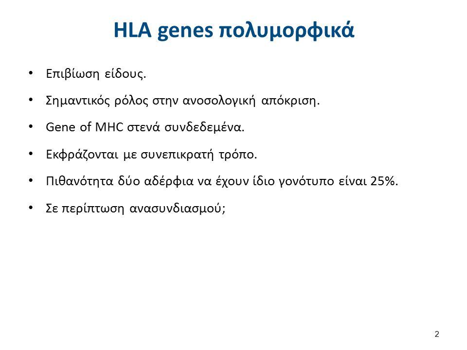 HLA genes πολυμορφικά Επιβίωση είδους. Σημαντικός ρόλος στην ανοσολογική απόκριση. Gene of MΗC στενά συνδεδεμένα. Εκφράζονται με συνεπικρατή τρόπο. Πι