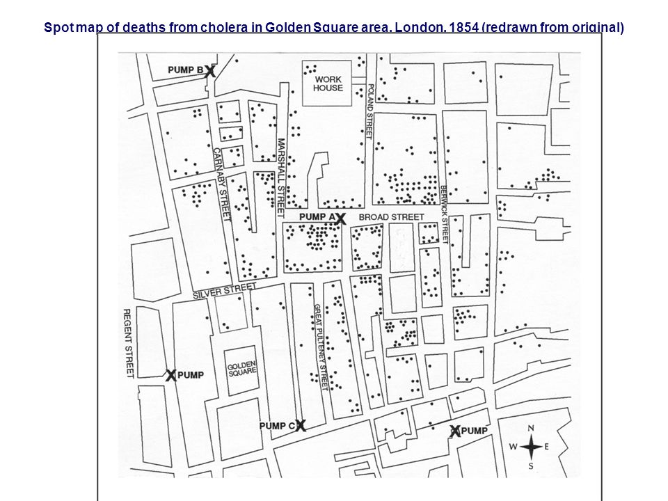 Spot map of deaths from cholera in Golden Square area, London, 1854 (redrawn from original)