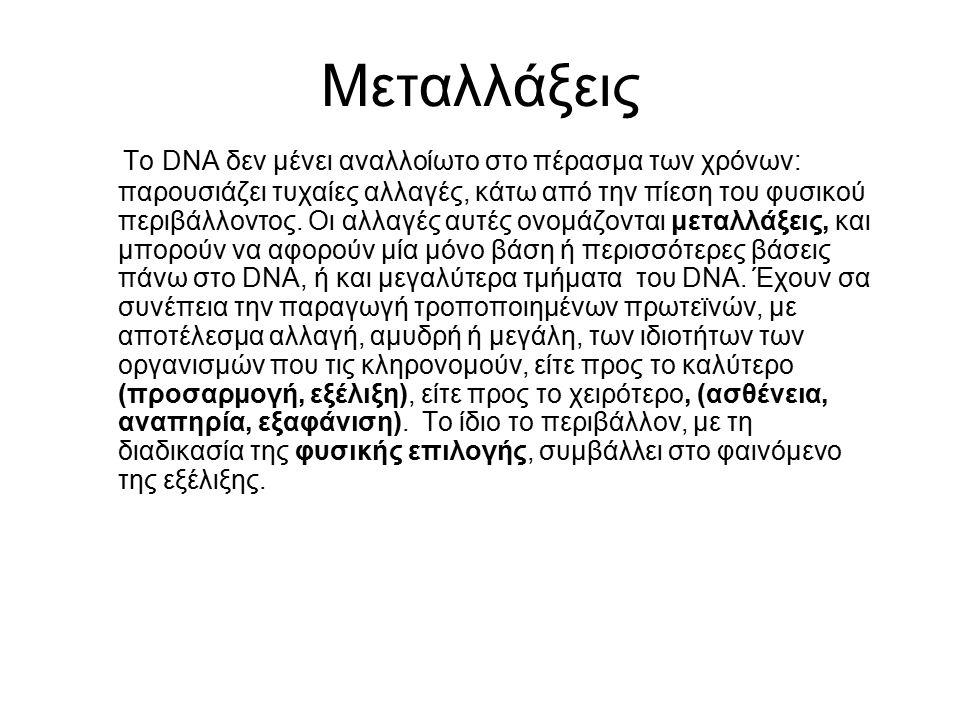 Μεταλλάξεις Το DNA δεν μένει αναλλοίωτο στο πέρασμα των χρόνων: παρουσιάζει τυχαίες αλλαγές, κάτω από την πίεση του φυσικού περιβάλλοντος. Οι αλλαγές
