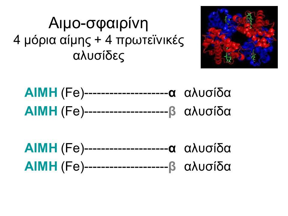 Αιμο-σφαιρίνη 4 μόρια αίμης + 4 πρωτεϊνικές αλυσίδες ΑΙΜΗ (Fe)--------------------α αλυσίδα ΑΙΜΗ (Fe)--------------------β αλυσίδα ΑΙΜΗ (Fe)----------